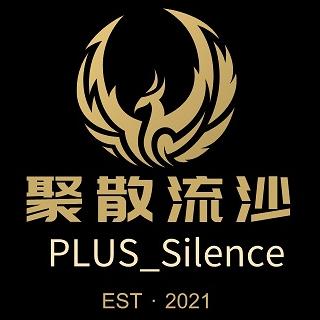 PULS_Silence