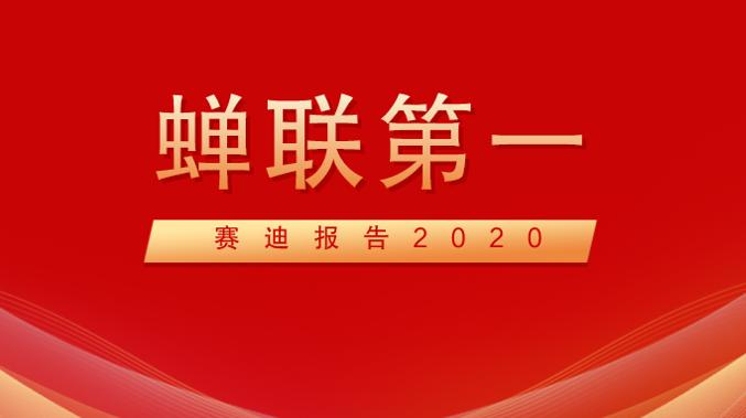 赛迪报告:2020年奇安信在网络安全整体市场位列第一